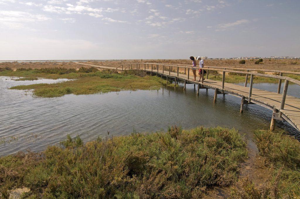 P.N. Marismas del Odiel. Huelva.